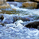 Stream Flowing Water 5 - VideoHive Item for Sale