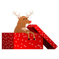 Christmas reindeer in the box vector - PhotoDune Item for Sale
