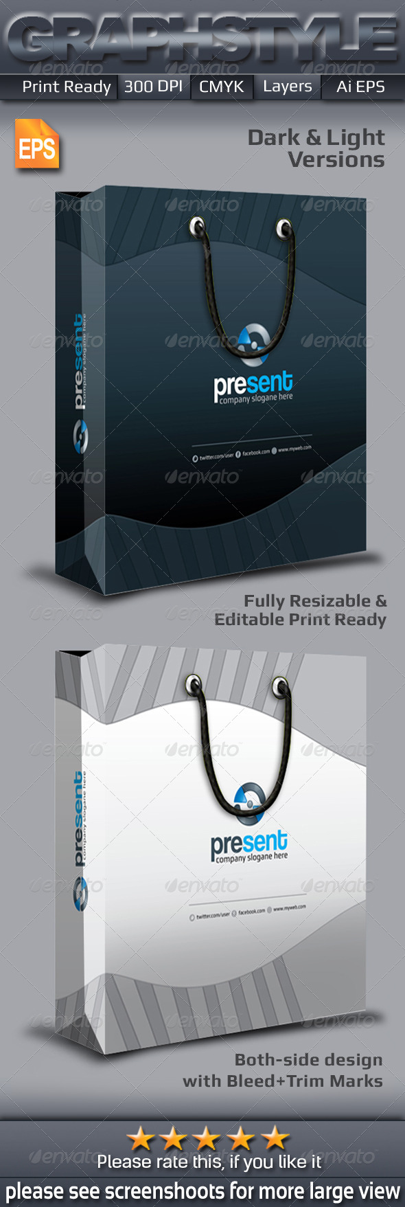 GraphicRiver Present Shopping Bag Packaging 6882206