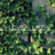 Love Vs Like - VideoHive Item for Sale