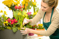 Florist arrange spring flowers colorful - PhotoDune Item for Sale