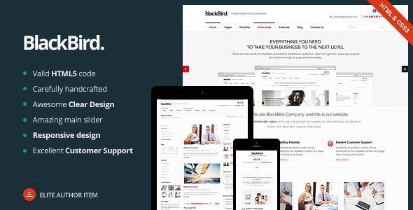 BlackBird - Responsive HTML5 Template - Business Corporate