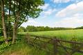 Green spring landscape - PhotoDune Item for Sale