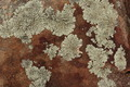 Colorful Rock Texture - PhotoDune Item for Sale