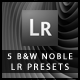 5 B&W Noble Lightroom Presets - GraphicRiver Item for Sale
