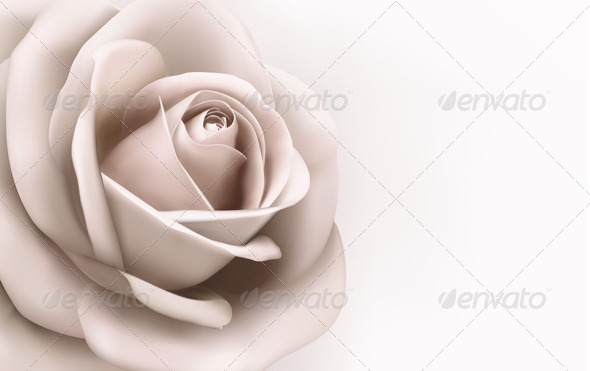GraphicRiver Rose Background 6914669