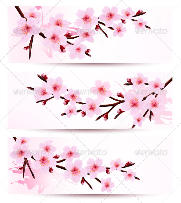 GraphicRiver Banners with Sakura Branches 6914734