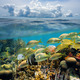 Split view underwater coral reef and cloud - PhotoDune Item for Sale
