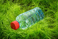 Water bottle on the grass. - PhotoDune Item for Sale