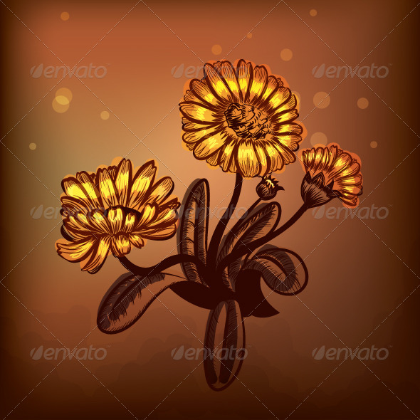 GraphicRiver Marigold 6964067