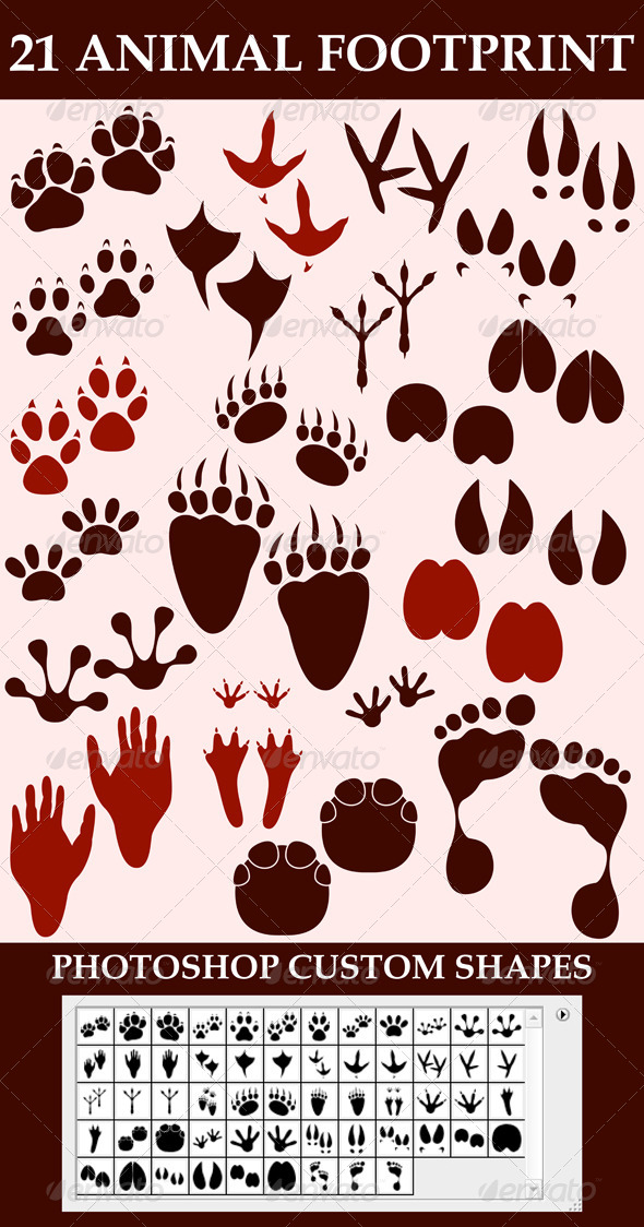 GraphicRiver Animal Footprint Custom Shapes 6965922