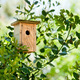 Wooden Birdhouse Hanging In The Tree - PhotoDune Item for Sale