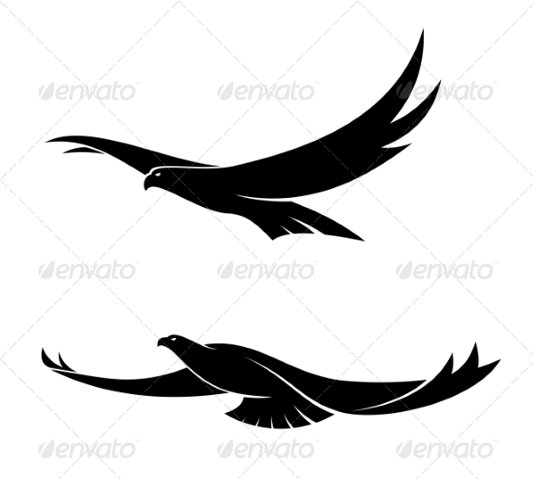 GraphicRiver Two Graceful Flying Birds 6982336