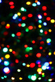 Holiday color unfocused lights - PhotoDune Item for Sale