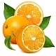 Fresh Ripe Oranges with Leaves. - GraphicRiver Item for Sale