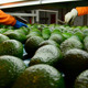 Hass Avocados Rolling Packaging Line - VideoHive Item for Sale