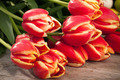Bunch Of Tulips - PhotoDune Item for Sale