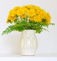 bouquet of dandelions in a jar - PhotoDune Item for Sale
