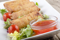 chinese spring rolls on a plate - PhotoDune Item for Sale