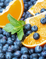Freshly picked blueberries with orange - PhotoDune Item for Sale