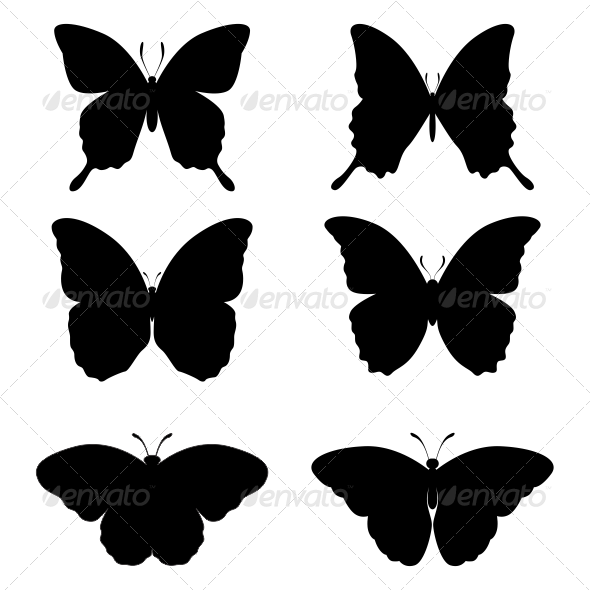 GraphicRiver Butterfly 7025826