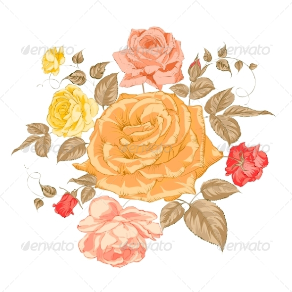 GraphicRiver Rose Bud over White 7029882