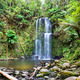 waterfall Tasmania - PhotoDune Item for Sale
