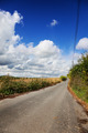 Single lane country road Hollingbourne - PhotoDune Item for Sale