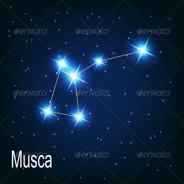 GraphicRiver The Constellation Musca 7035901