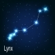The Constellation Lynx - GraphicRiver Item for Sale
