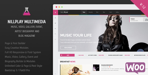 Nillplay Multimedia Music, Video, Event Magazine - Entertainment WordPress