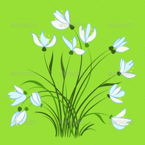 GraphicRiver First Spring Flowers Snowdrops 7049125