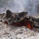 Burning Stump - VideoHive Item for Sale