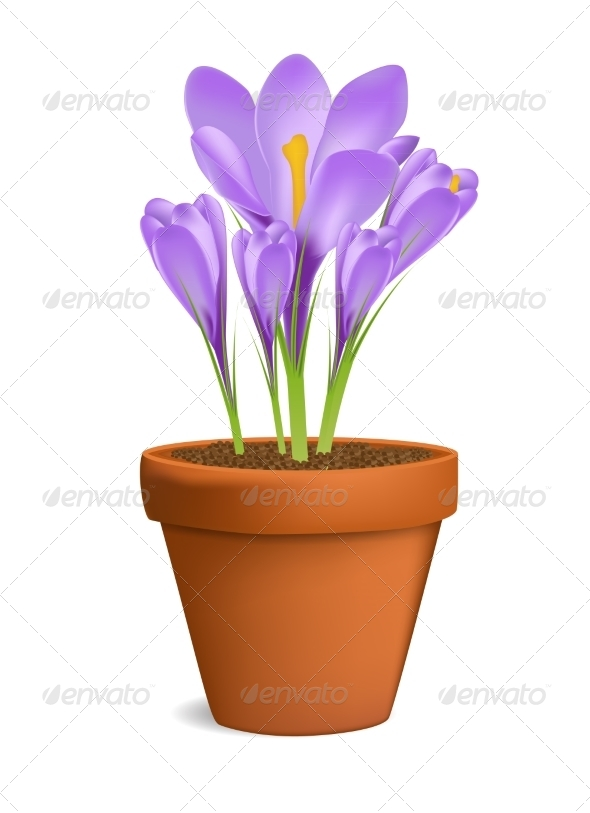 GraphicRiver Flowerpot 7049894