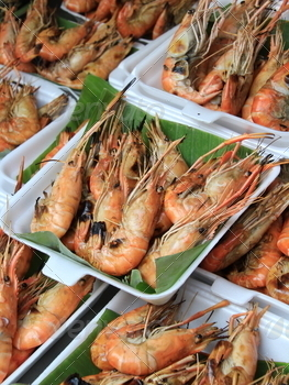 Grilled Shrimp - PhotoDune Item for Sale