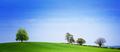 Spring panorama - PhotoDune Item for Sale
