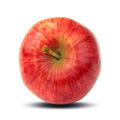 Ripe red apple - PhotoDune Item for Sale