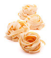 Italian pasta fettuccine nest - PhotoDune Item for Sale