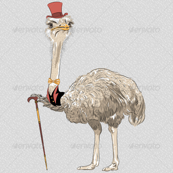 GraphicRiver Ostrich Bird Hipster 7087408
