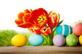 Tulips and easter eggs - PhotoDune Item for Sale