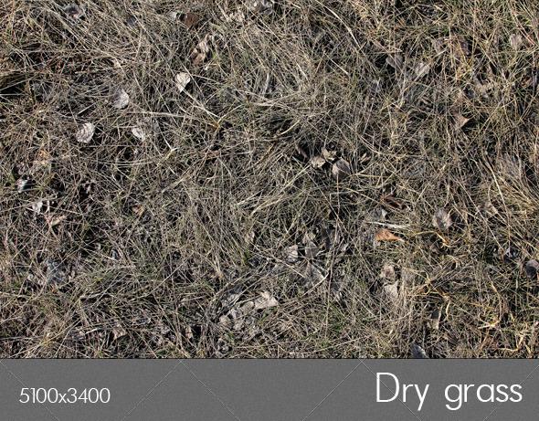 GraphicRiver Dry grass 7095518