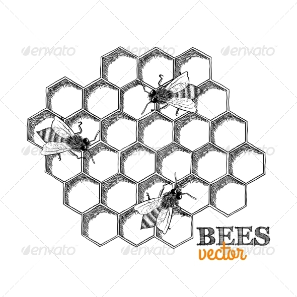GraphicRiver Honey Bees and Honeycomb 7103149