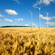 Wind generators turbines on wheat field - PhotoDune Item for Sale