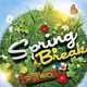 Spring Break / Summer Party Flyer 2 - GraphicRiver Item for Sale