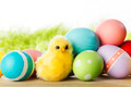 Easter eggs and chickens - PhotoDune Item for Sale