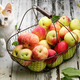 apple basket and cat - PhotoDune Item for Sale