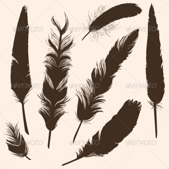 GraphicRiver Vector Set of Plumage Silhouettes 7120377