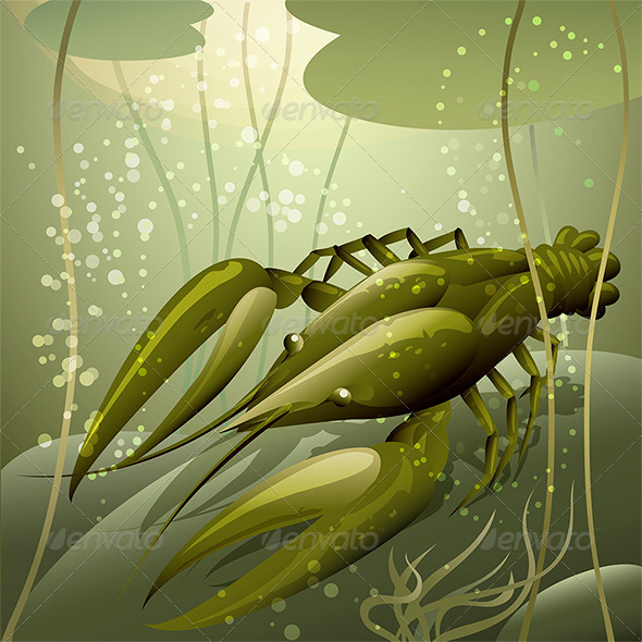 GraphicRiver The Crayfish 7122254