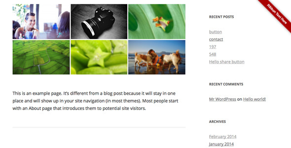 CodeCanyon Ribbon Panel WordPress Plugin 7127735