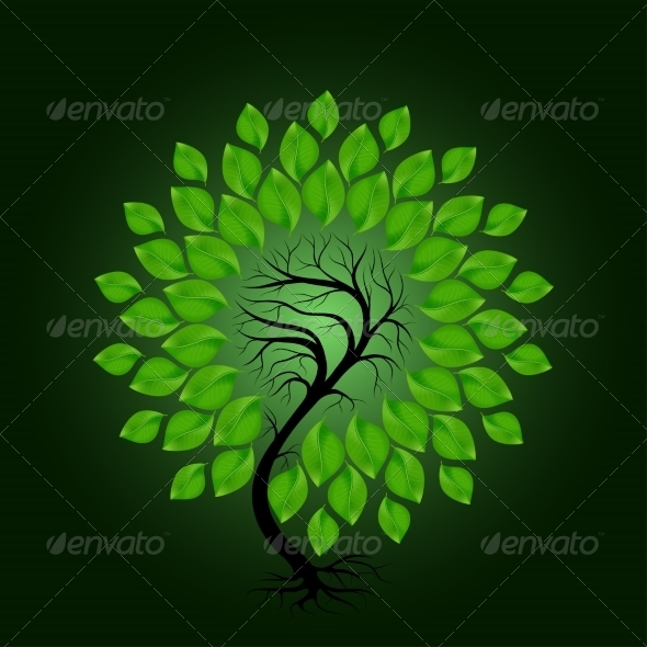GraphicRiver Tree with Green Leafage on Dark Green Background 7169936